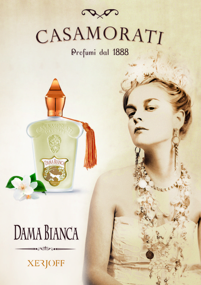 بررسی، مشاهده قیمت و خرید عطر (ادکلن) زرجف-زرژاف داما بیانکا Xerjoff Dama Bianca اصل