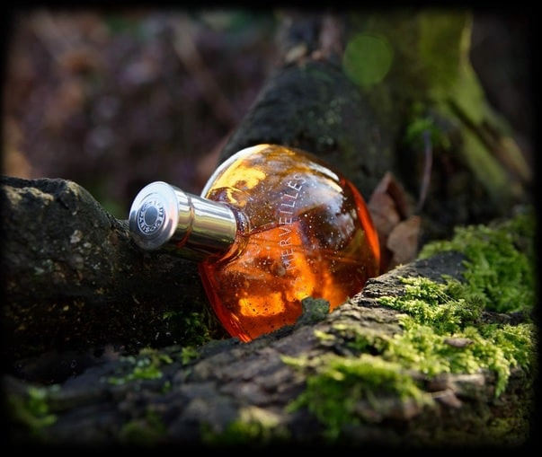بررسی، مشاهده قیمت و خرید عطر (ادکلن) هرمس الکسیر دس مرویلس ادو پرفیوم Hermes Elixir Des Merveilles EDP اصل